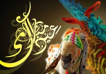 Bakra Eid Wallpaper Hd