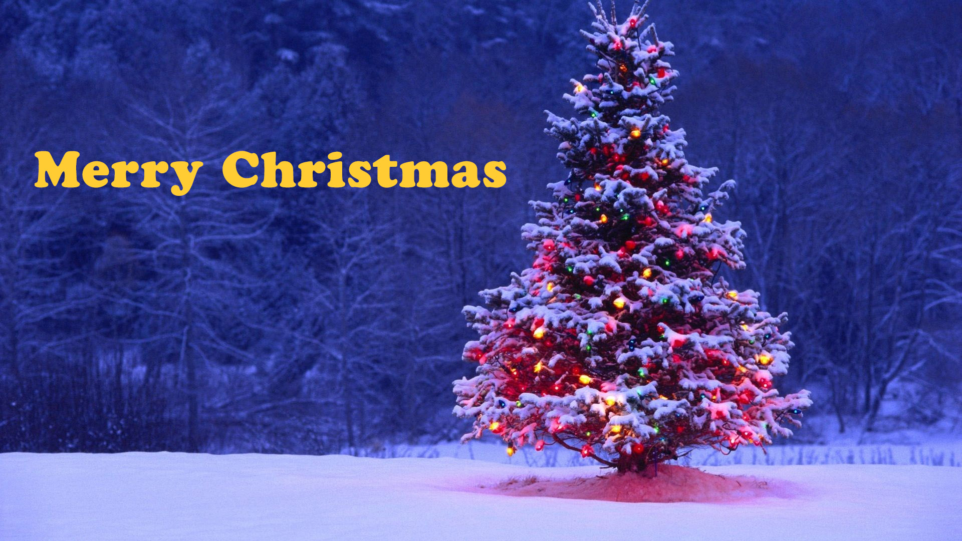 Christmas Tree Wallpaper Iphone