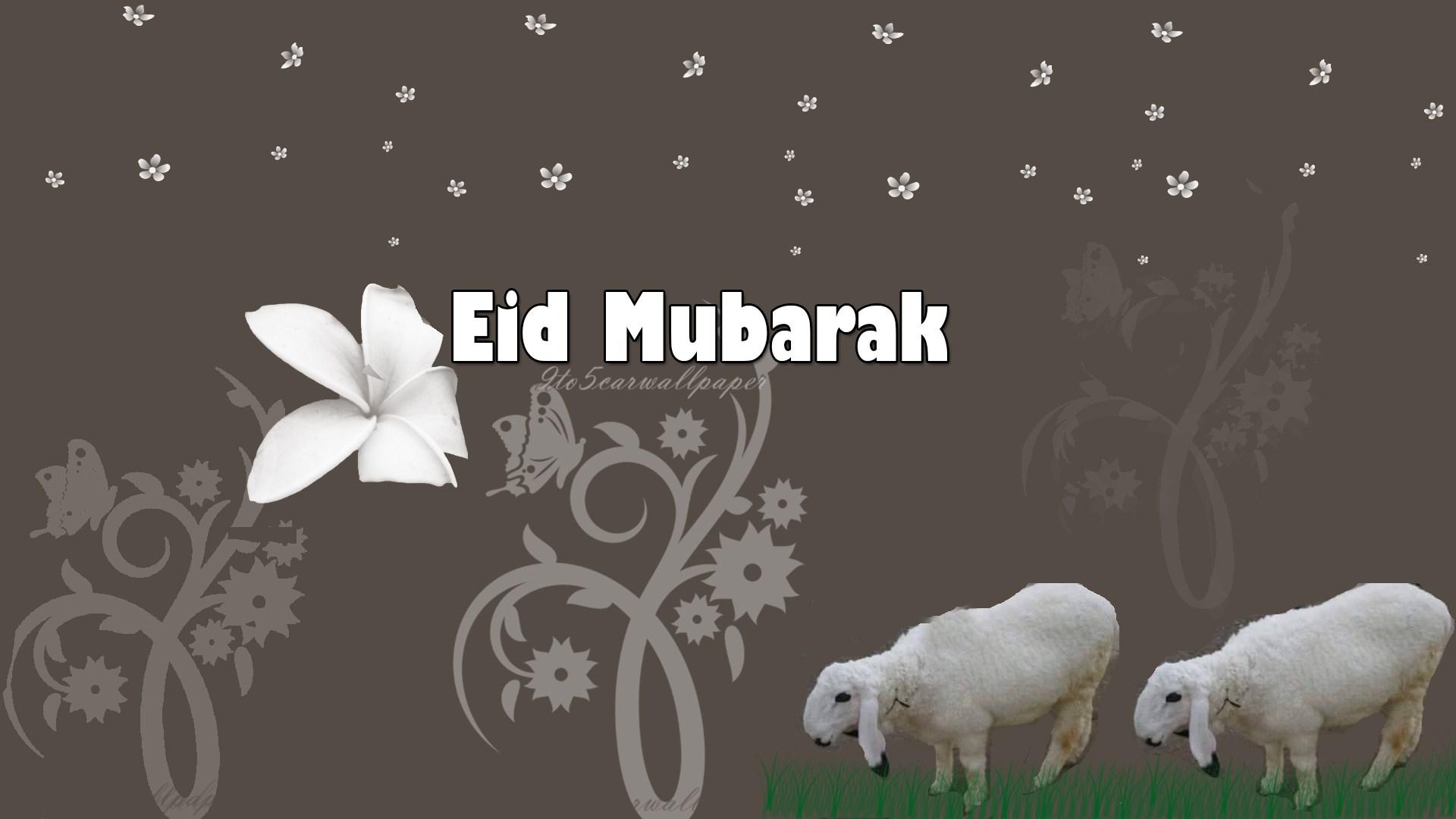 Eid Ul Adha Images Hd