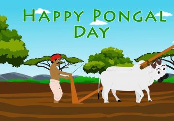 Happy Pongal Festival Wishes Pongal Day Wishes Images Pictures