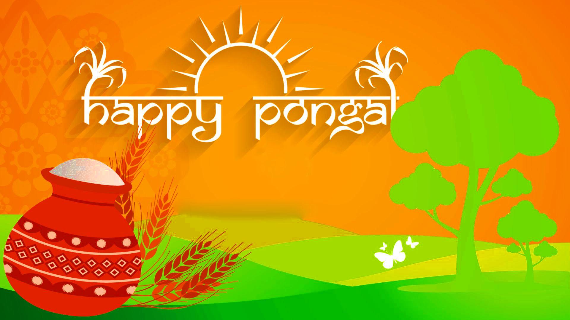 Happy Pongal Festival Wishes Pongal Rongoli Bihu Images