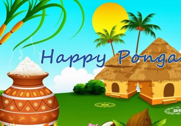 Happy Pongal Hd Desktop Background Wallpapers