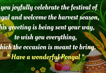 Happy Pongal Hd Wallpaper Free Download 1920×1080