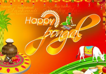 Happy Pongal Hd Wallpapers Pics Tamil Telugu Download