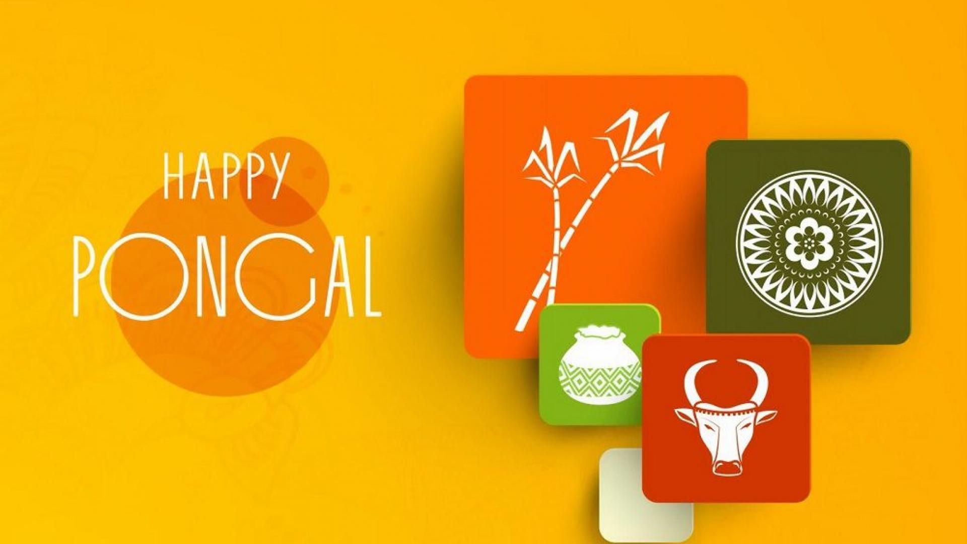 Happy Pongal Whatsapp Dp Wallpaper 1920×1080
