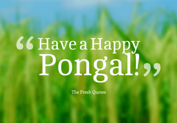 Have A Happy Pongal Happy Pongal Hd Wallpaper For Pc 1920×1080