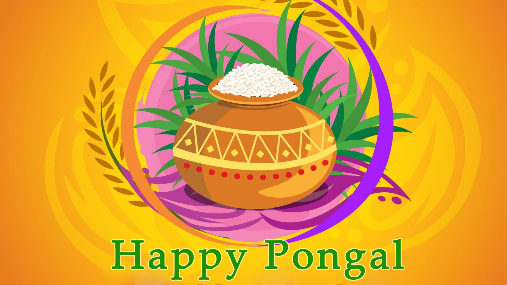 Pongal Festival Celebration Picture Wallpapers Tamil