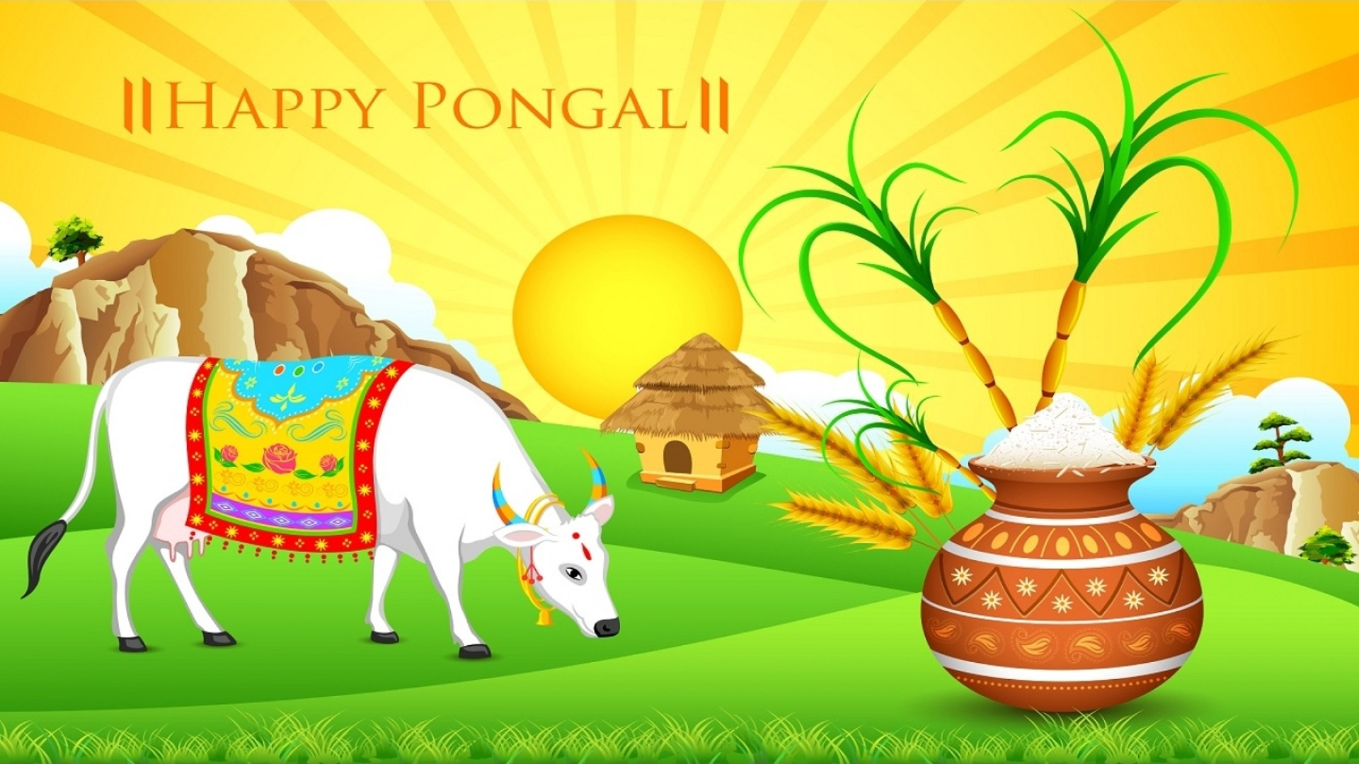 Pongal Festival Images Wallpapers Full Size 1080p