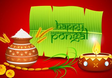 Pongal Festival Photo Picture Hd Wallpapers Download For Desktop 1080p