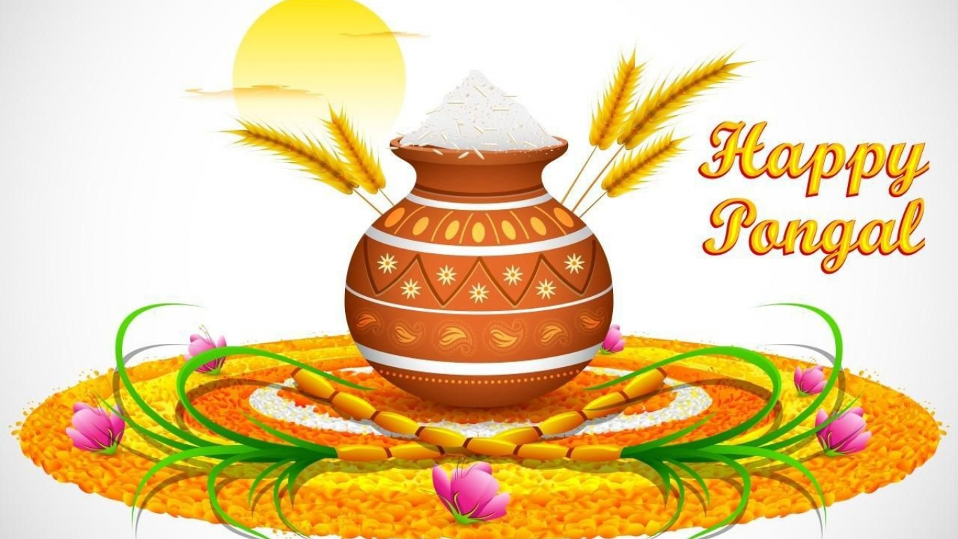 Pongal Festival Pictures Images Photos Download