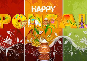Pongal Hd Images Free Download For Android Phone Desktop Pc Facebook