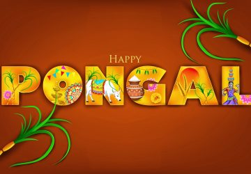Pongal Images Free Download For Whatsapp Dp