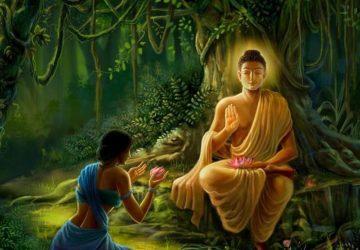 Buddha Wallpaper Hd 1080p Free Download